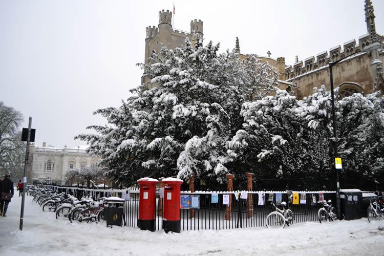 Winter arrives at Duke House!
